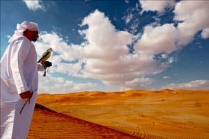 ADIEFF launches UAE Environmental film contest
