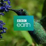 Foxtel, BBC Studios ink long-term agreement