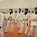 Image Nation Abu Dhabi to screen Jiu-Jitsu documentary 'Botoula' on September 30