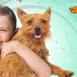 BeIN launches new show 'Larry the Wonder Pup' on JeemTV